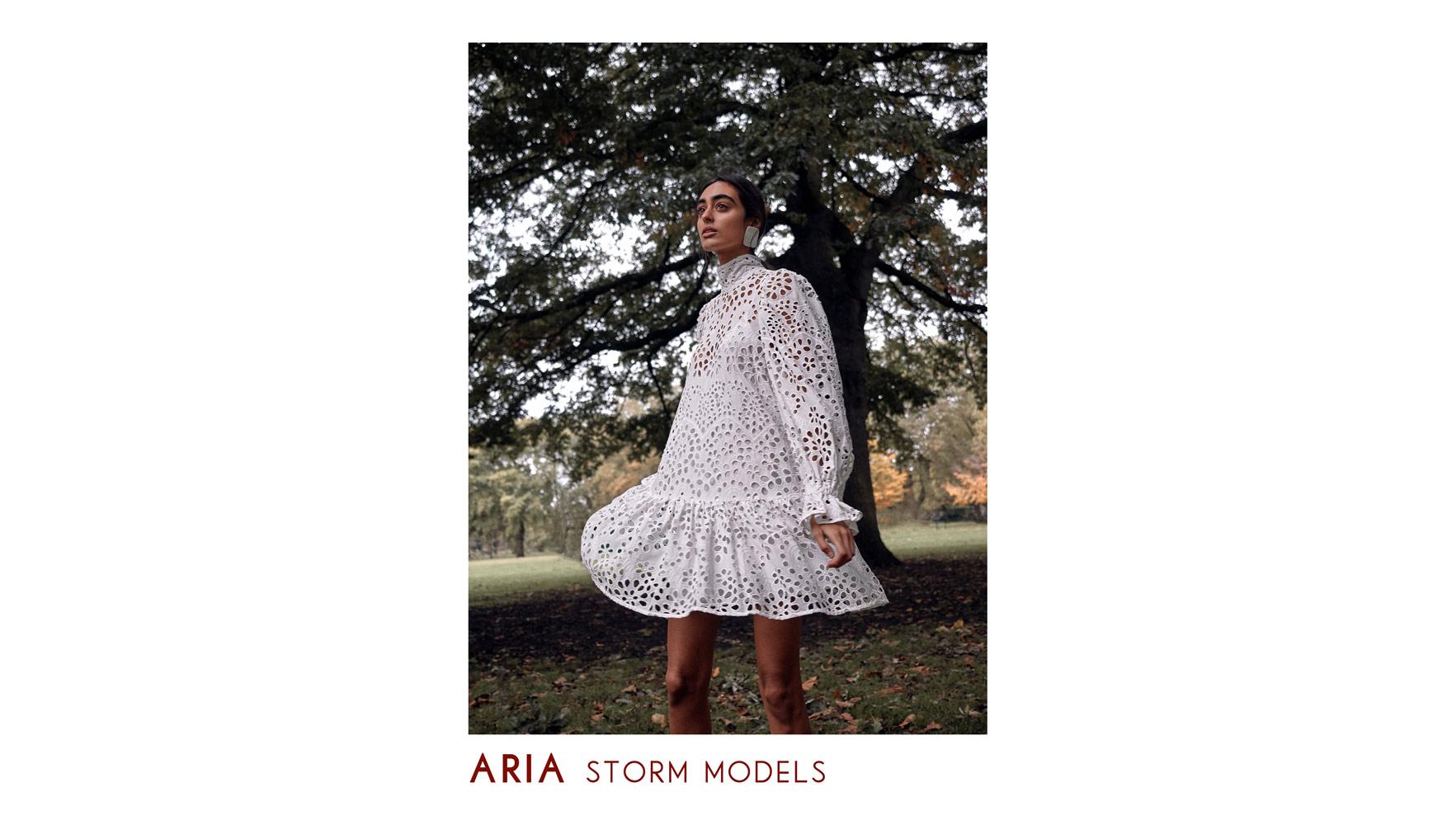 Aria – Storm Models